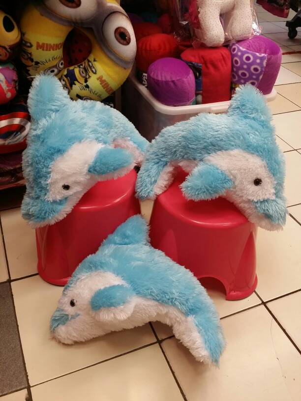 Dolphin Lumba-lumba