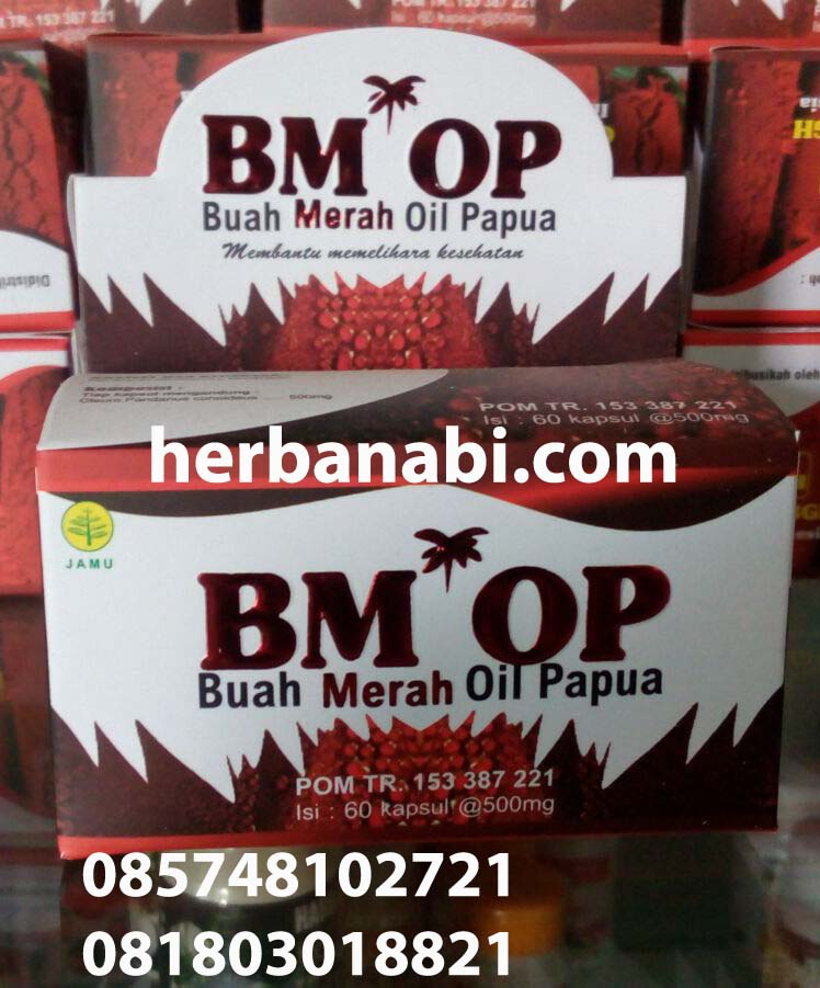 Jual BMOP OIL GRIYA AN NUR CAKCIP Tokopedia Source. Kapsul minyak Buah Merah Papua Wamena