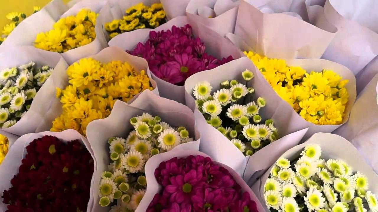 TOKO BUNGA CIKARANG - Cara Merawat Bunga Potong bungacikarang.com