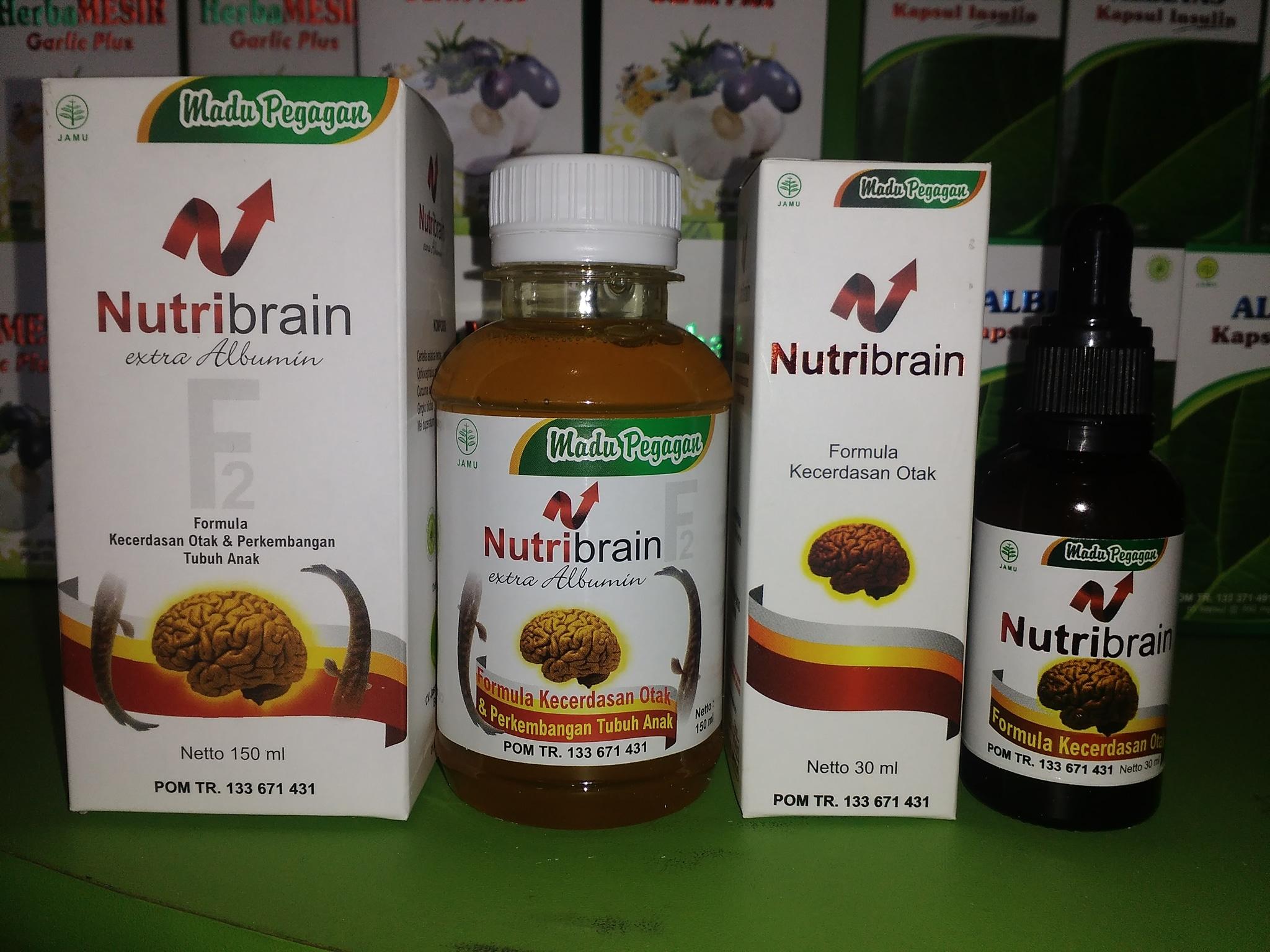 Nutrisi Kecerdasan Otak & Perkembangan Tubuh Anak Nutribrain F2 Source Kecerdasan Otak Source .