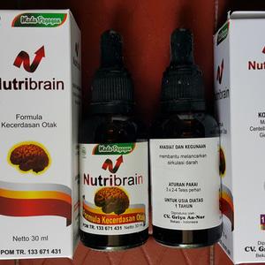 nutribrain tetes nutrisi kecerdasan otak madu an