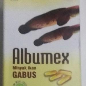 albumex minyak albumin ikan gabus