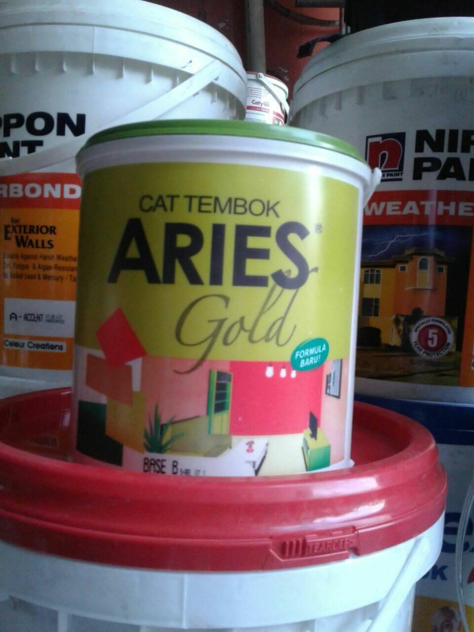 Warna Cat Tembok Aries Desain Rumah Minimalis Terbaru