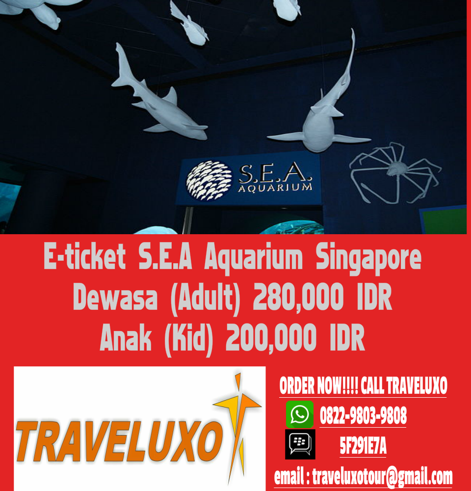 Jual Voucher E Tiket Sea Aquarium Singapore Resmi Traveluxo Dewasa Tokopedia