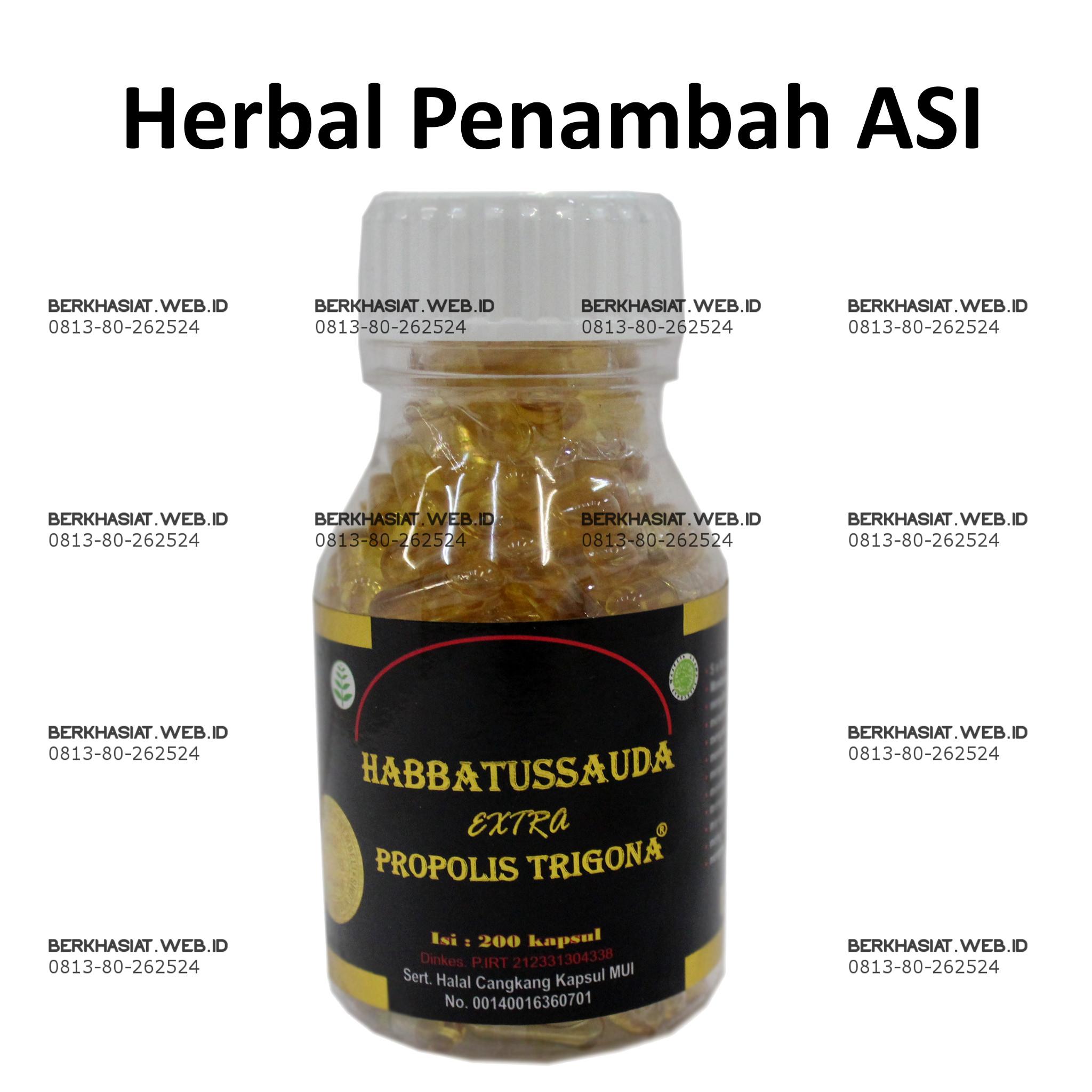 Jual Menambah Asi Herbal Propolis Trigona Plus Habbatussauda Habatussauda 200 Kapsul Penambah Febryan Paudi Tokopedia