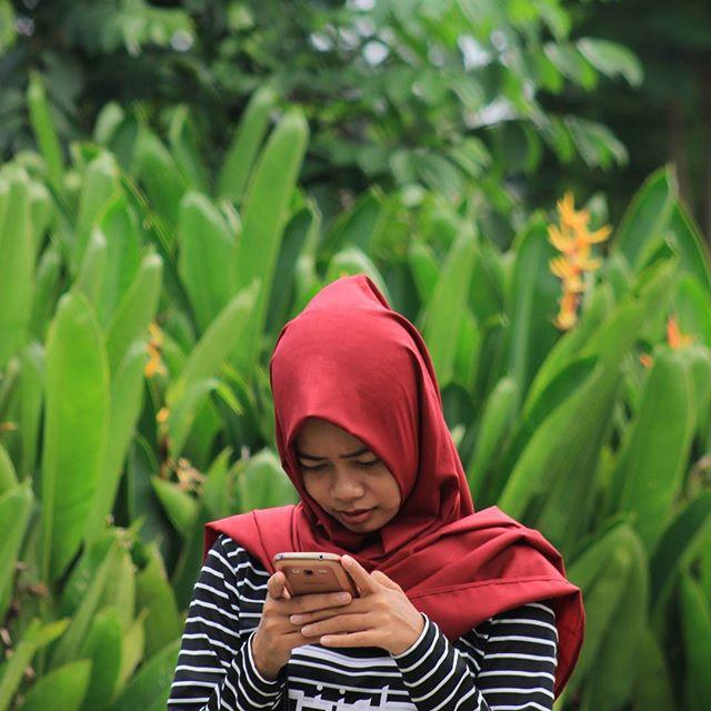Jilbab Pashmina Katun Ima Polos PKIP1 (Grosir Kerudung/Hijab Murah)