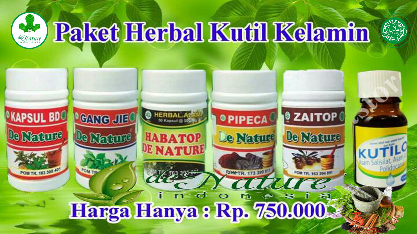 Obat Herbal Alami Khusus Kutil Kelamin Herbal De Nature