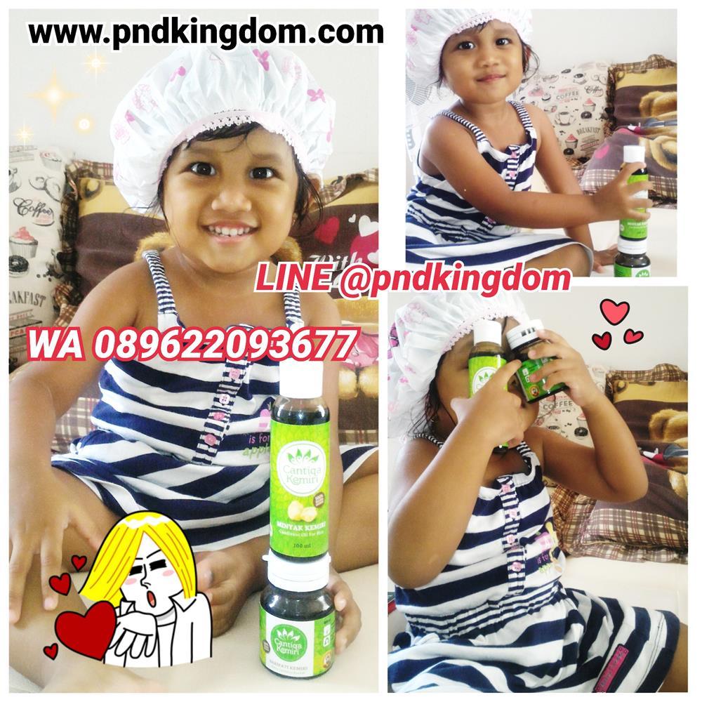 Penyubur Rambut & Penumbuh Alis Minyak Kemiri Asli  - Blanja.com