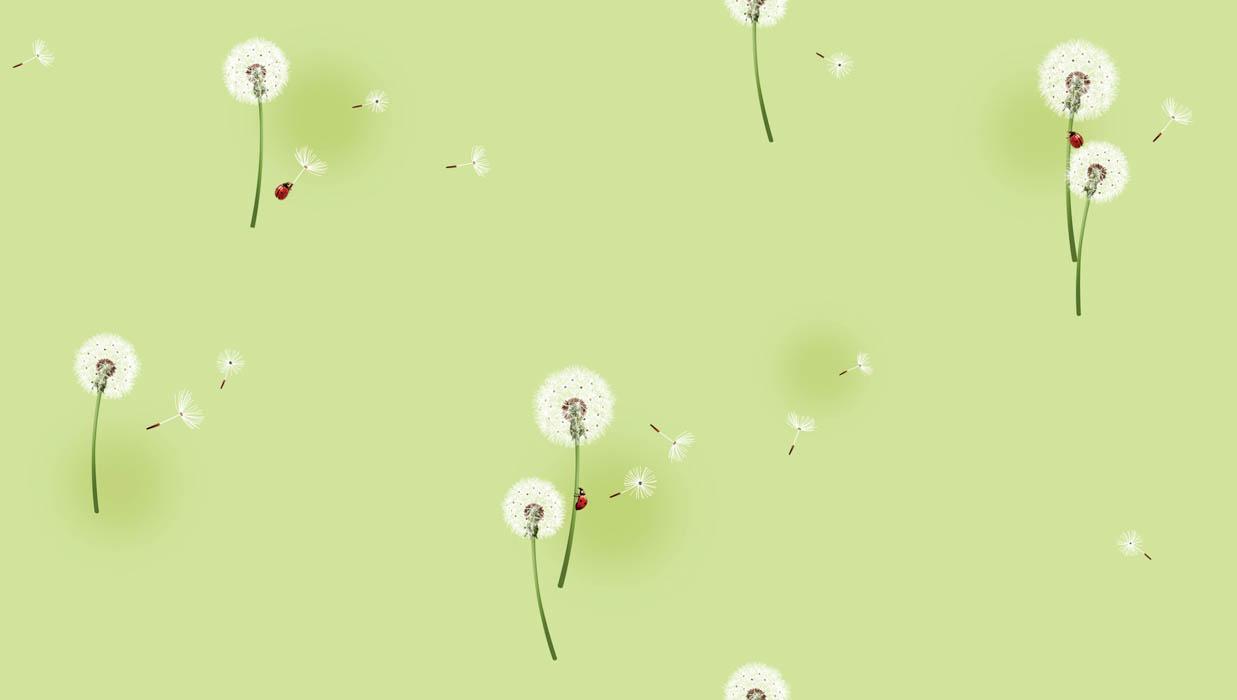 Unduh 400 Wallpaper Bunga Dandelion HD Gratid