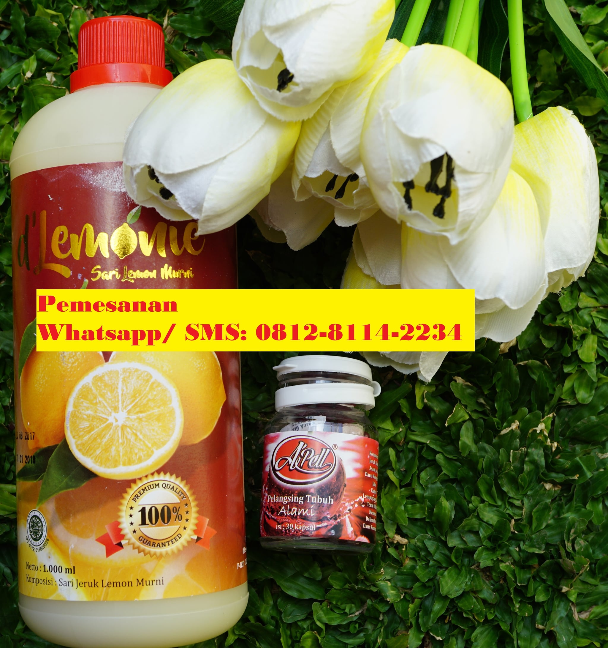 Jual Paket De Lemonie Apel Kapsul Pelangsing Hemat Hot  Kunyit Asem 1 Ltr Delemonie Tokopedia