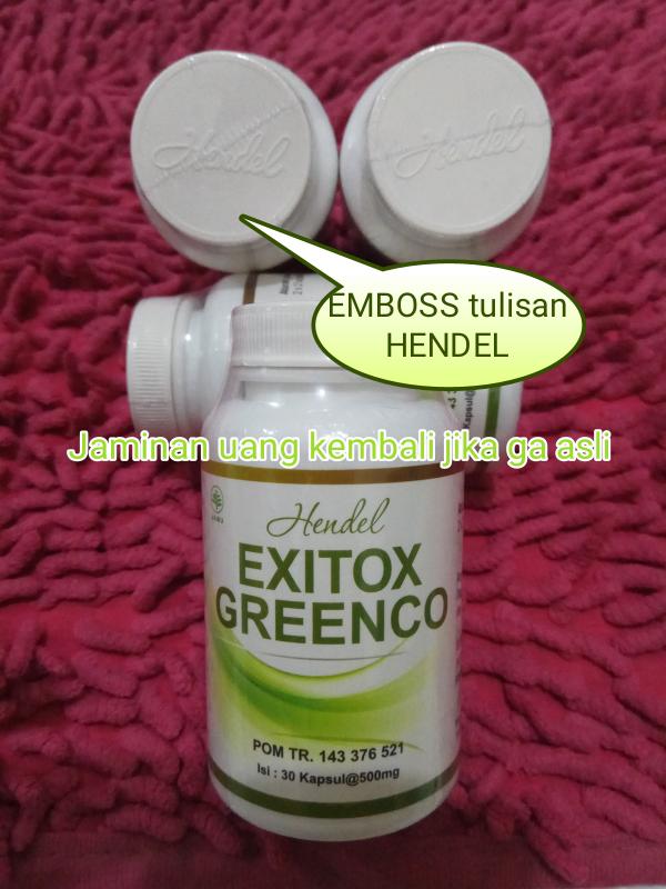 hendel exitox greenco green coffee