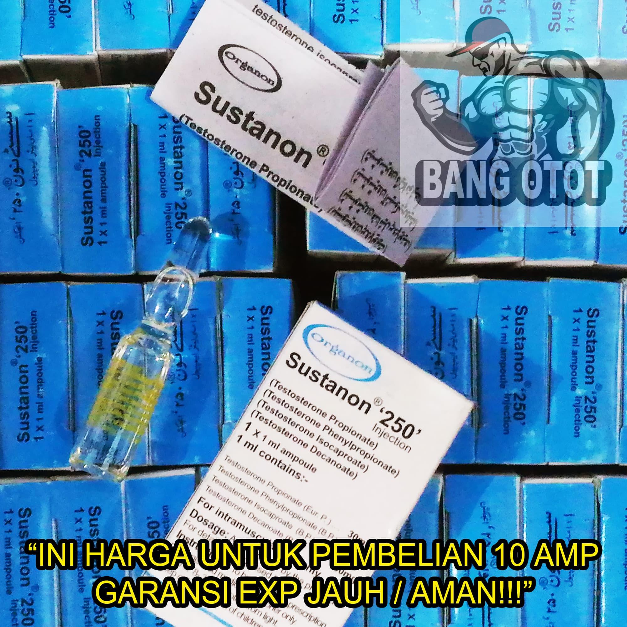 Jual Harga Per 10 Amp Organon Sustanon 250 Sustanon250 Bang Otot Tokopedia