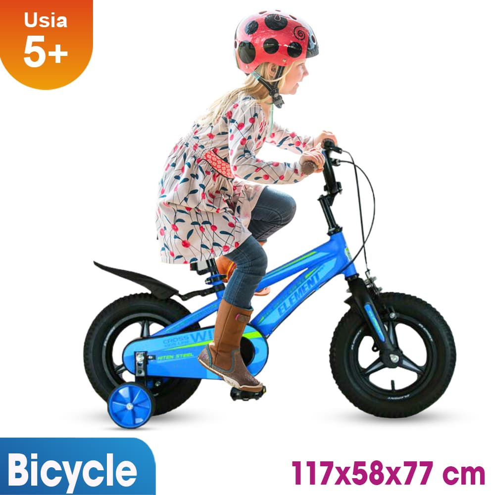 harga Sepeda Anak 16 Inch Rmb Wild Biru Blanja.com
