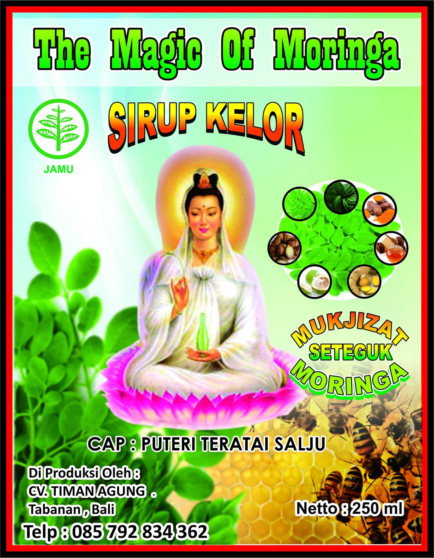 Jual Produk Ukm Bumn Sirup Madu Kelor Super Nutrisi Herbal Car Charger 2 Usb